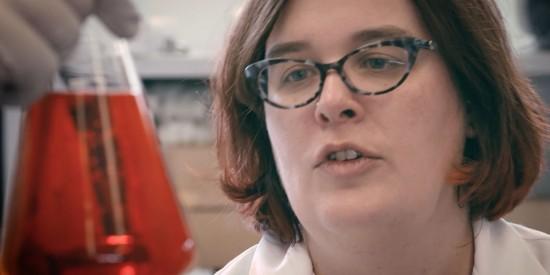 Sara Skrabalak, FRED Award Winner 2017